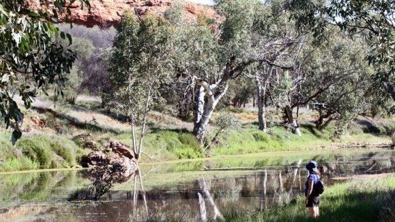 Jay Creek
