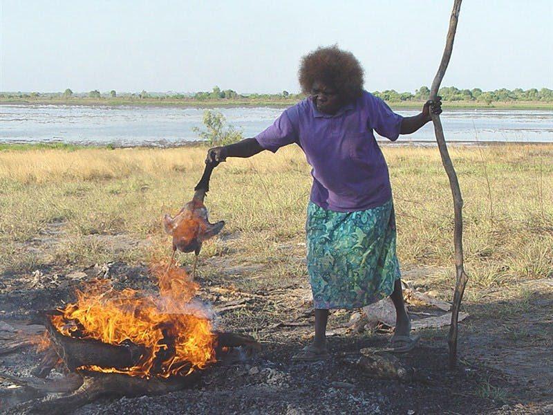 Kakadu Animal Tracks - Kakadu Area - Northern Territory
