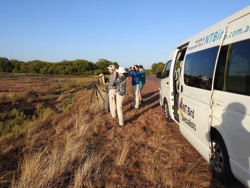 Birding Tours Kakadu