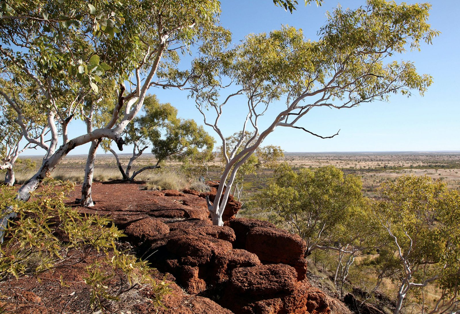 Magnificent panorama from the red earth mesa, Mount Possum, looking west towards Kalkarindji.