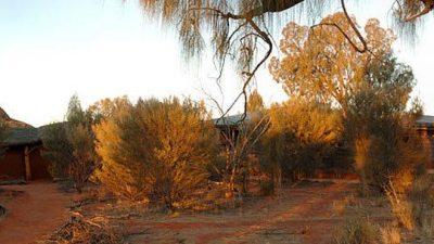 Uluru-Kata Tjuta Cultural Centre, Yulara, Northern Territory, Australia