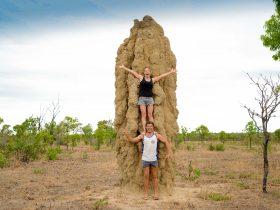 Adam & I termite mound