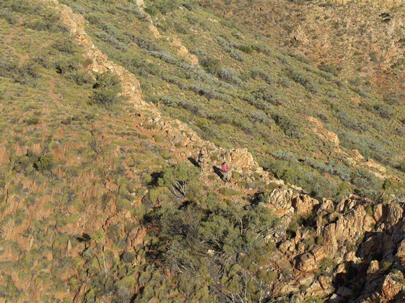 Larapinta Transfers - Alice Springs Area - Northern Territory