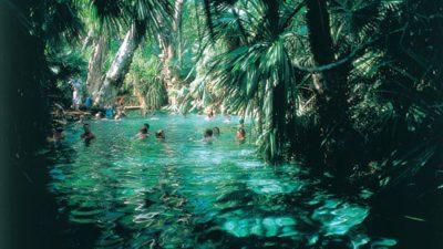 mataranka pool