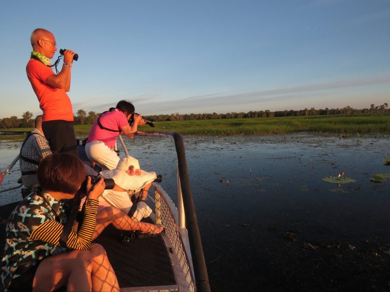 Private birding and photography cruise_ Yellow Waters