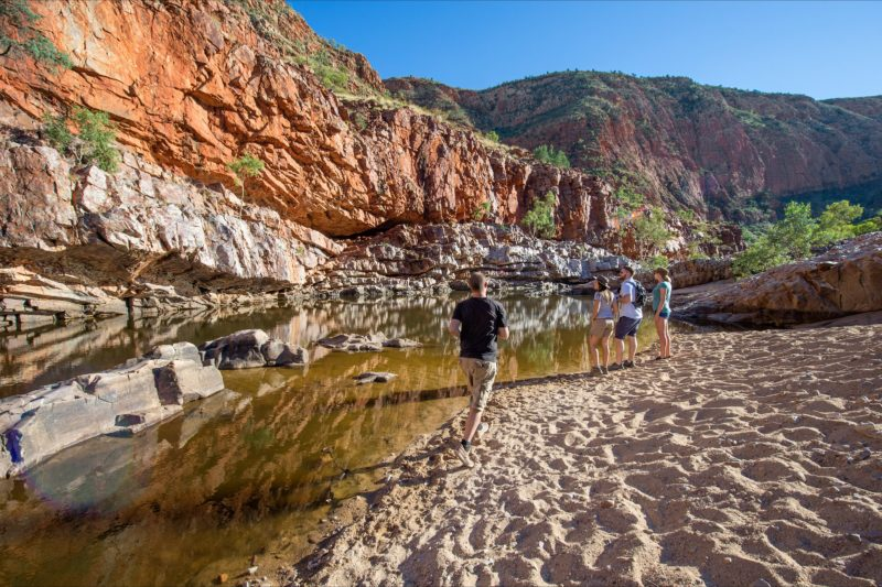 A group looking at the waterhole in Ormiston Gorge