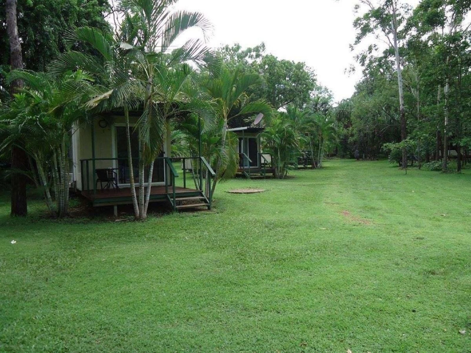Pandanus on Litchfield Cabins