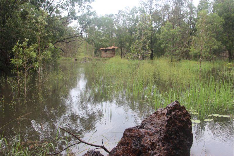 Bird hide with accommodation for birders on wet season lagoon at Rakhi Retreat
