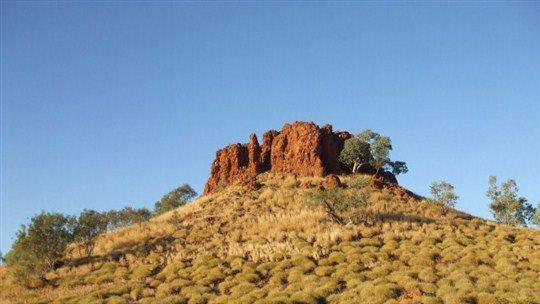 Renner Springs Desert Inn, Tennant Creek Area, Northern Territory, Australia