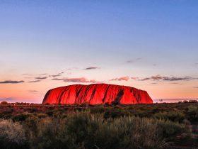 2 Day Uluru Tour - Camping Adventure
