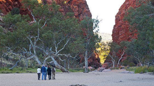 RT Tours, Alice Springs area, Northern Territory, Australia