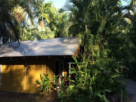Bungalow exterior - Rum Jungle Bungalows