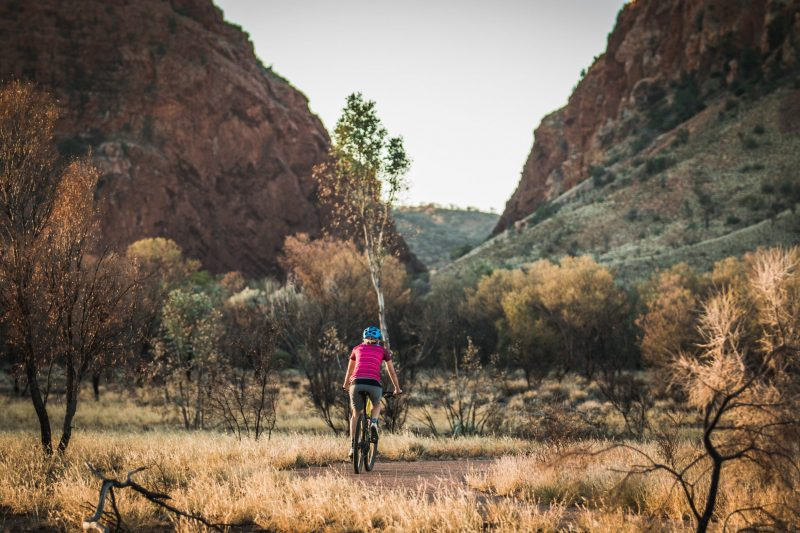 A woman riding a mountain bike on the path towards Simpsons Gap