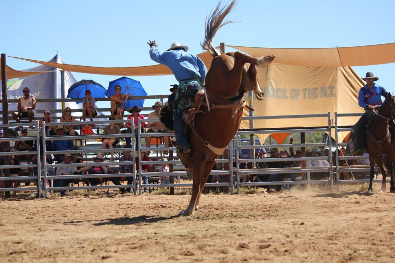 2nd round of open saddle bronc ride