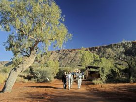 Tailormade Tours - Northern Territory