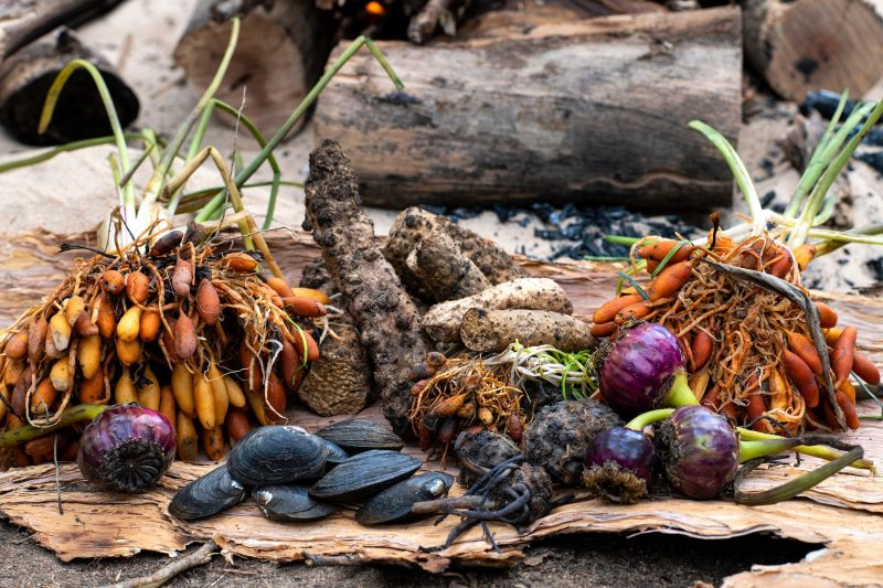 Indigenous and traditional foods.