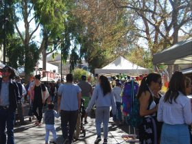 The Todd Mall comes alive with the Todd Mall Markets