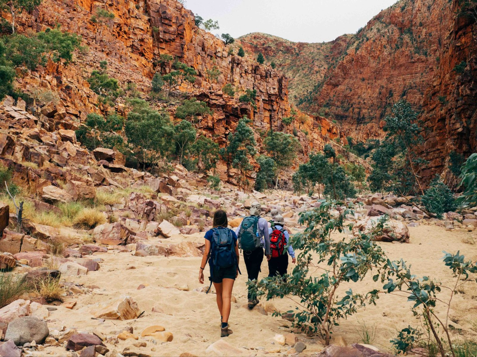 Trek Larapinta | Attraction Tour | Alice Springs | Northern Territory -  Australia's Guide