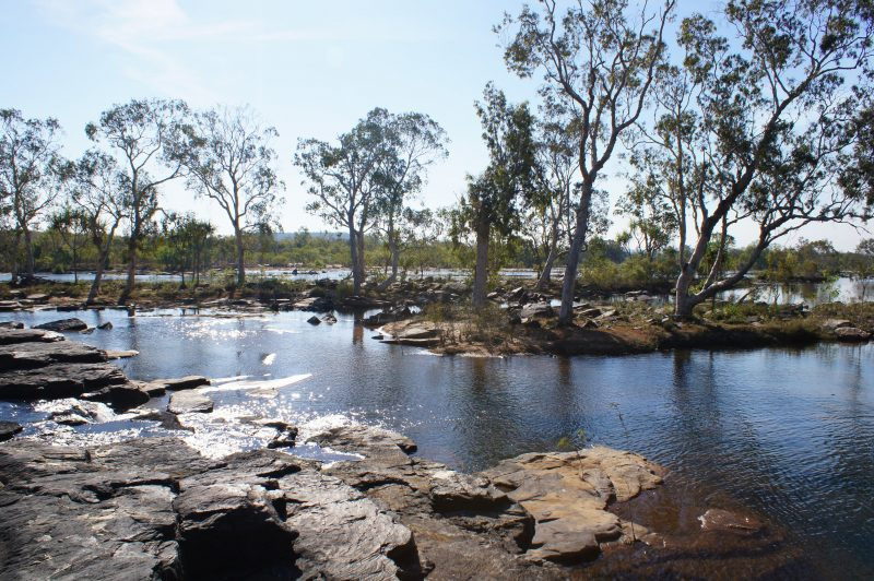 Explore billabongs, river systems and beautiful scenic areas.
