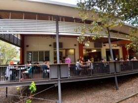 wangi_falls_cafe_litchfield_national_park