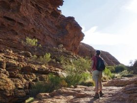 Watarrka (Kings Canyon) area