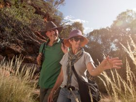Visitors explore Kings Canyon on the Kings Creek walk.