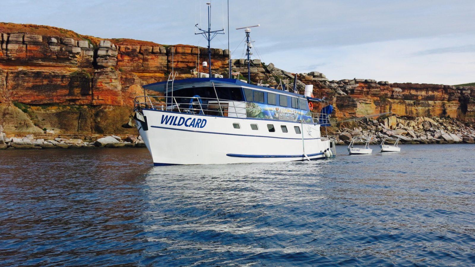 Wildcard Luxury Cruises