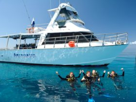 Adrenalin Snorkel and Dive