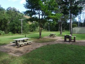 picnic tables are set amongst tall trees in open grassy area.