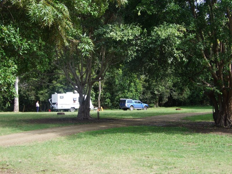 Caravan set on open grassy space in shade of tall trees.