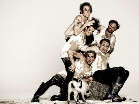 Animal Farm by George Orwell Created by shake & stir theatre co