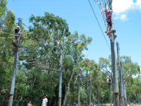 High Ropes and Flying Fox