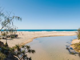 Aussie Trax Fraser Island 4x4 Self Drive Tours