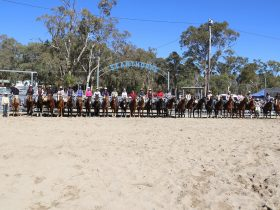 Riders in the Wholesale Horsewear House Mum's Run - resized