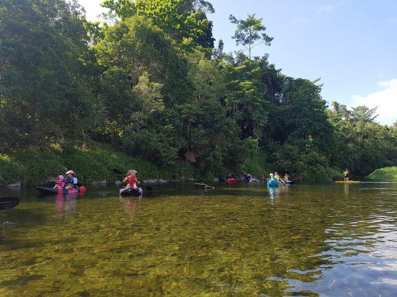 Babinda Kayaking and SUPs