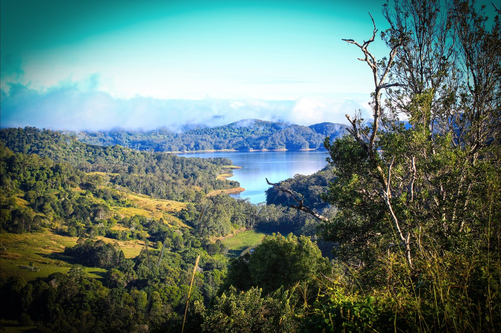 Baroon Pocket Dam, Sunshine Coast