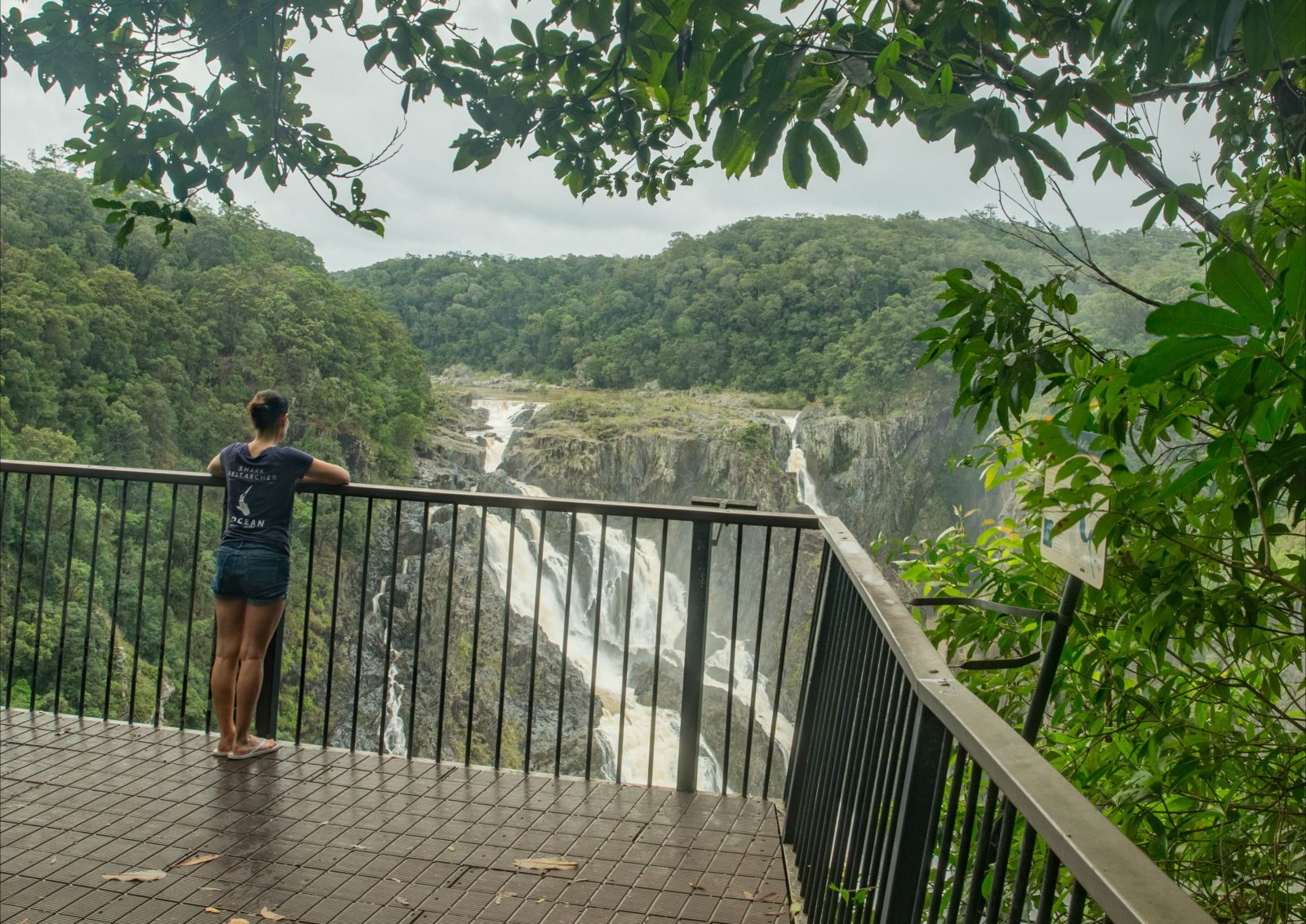 View of barron Falls from Din Din Barron Falls lookout, Barron Gorge National Park