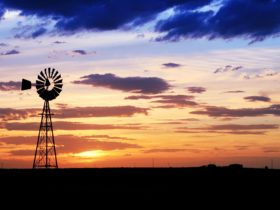 Sunset, Bell