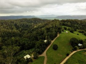 Private self contained accommodation with rainforest , wildlife, waterfalls and walking tracks