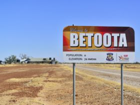 Betoota Sign