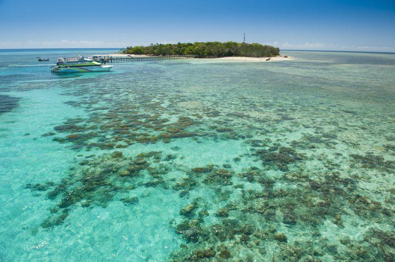 Green Island Great Barrier Reef Tours