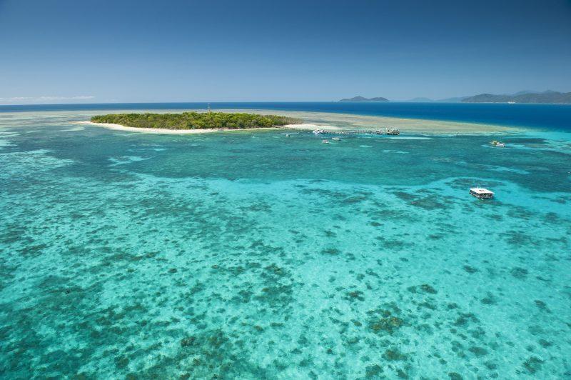 Cairns Reef Tours - Big Cat Green Island Reef Cruises