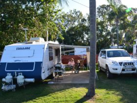 Powered caravan site with grass and a concrete slab at Big4 Point Vernon Holiday Park