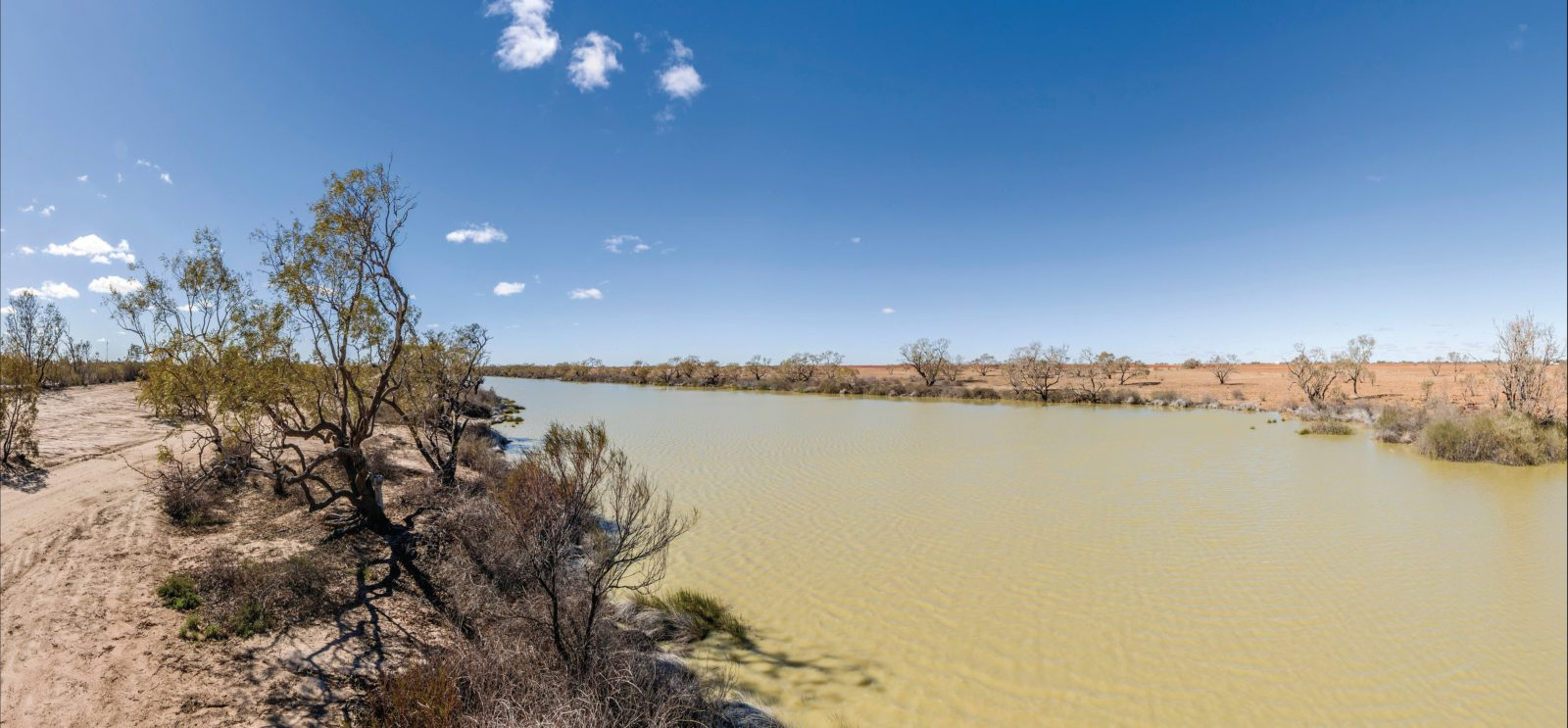 Birdsville Billabong
