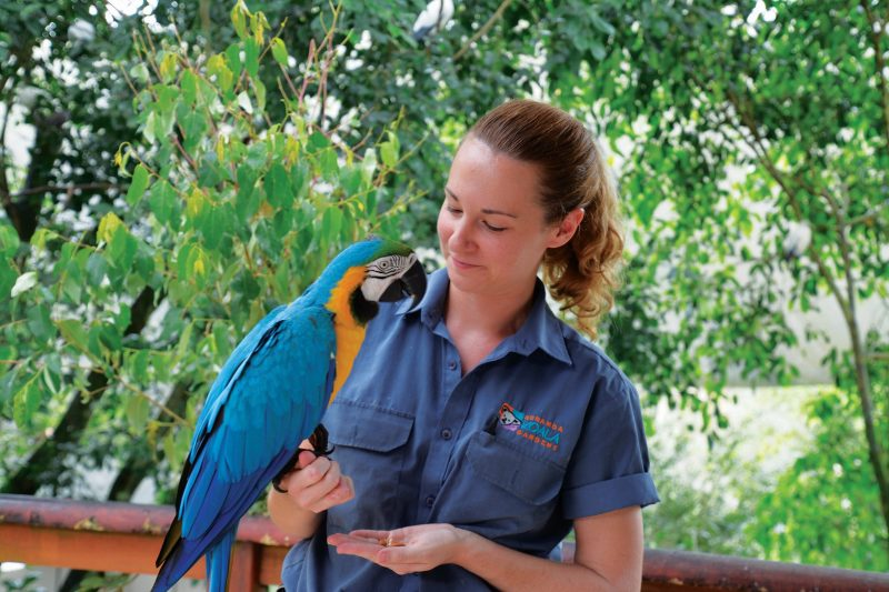 Macaw with our Keeper