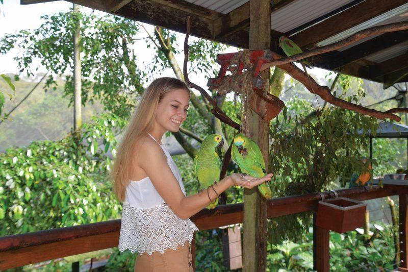 Bird Feeding Birdworld Kuranda