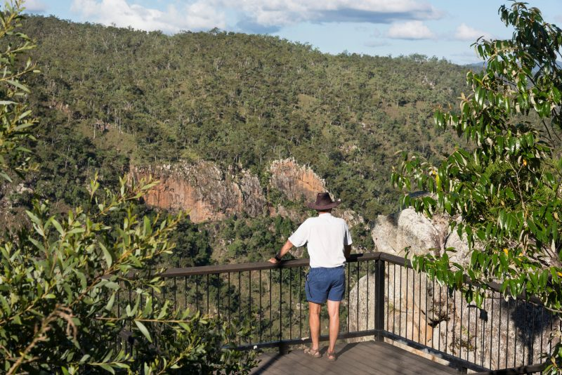 Person stands at lookout with views over forested slope and waterfall.