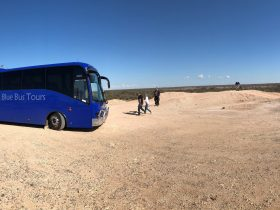 tour coach and people at lookout at Lightning Ridge