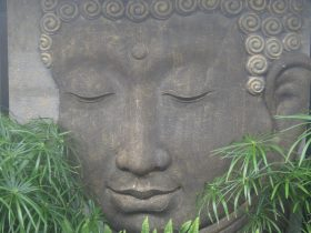 Buddha Head Body & Soul Spa Retreat - Mount Cotton