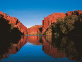 Red sandstone cliffs reflected on blue waters of Lawn Hill Creek.